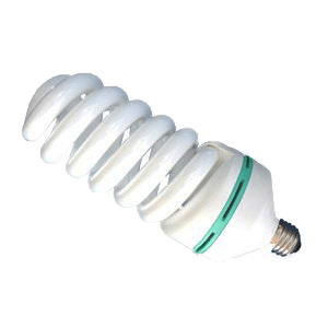 Back light CFL bulb for Studio Photography from Photozuela